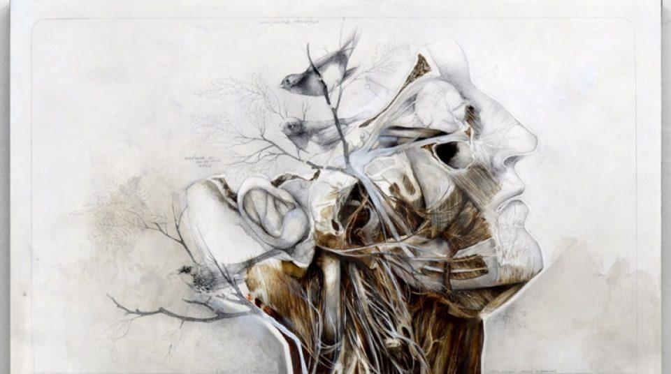 Gerçek ile Hayal Arasında Çizimler